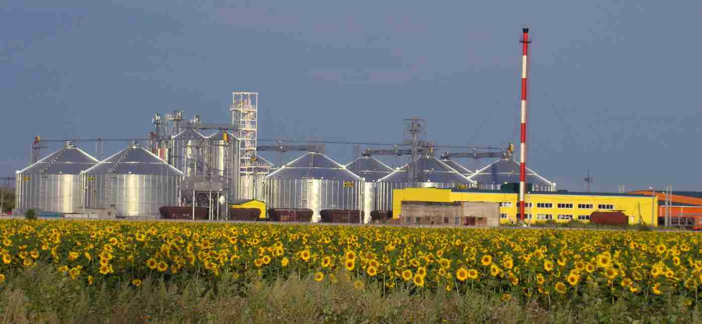 Продукция подсолнечное нерафинированное масло осенний букет, гкирсанов 2016
